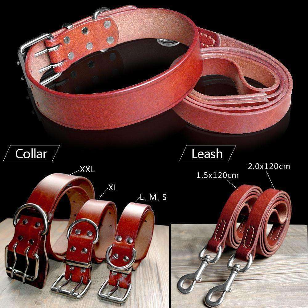 Luxury Genuine Leather Collar and Leash Set Leash - iplayfetch.com