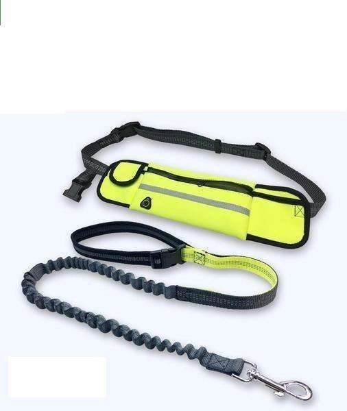 Exercise Waist Bag and Leash Set Leash - iplayfetch.com