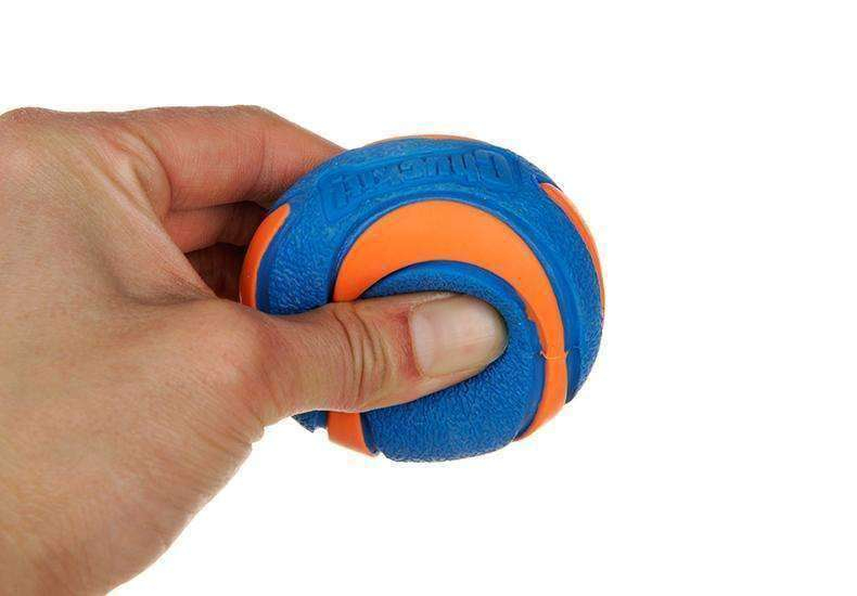 Chuckit Ultra Squeaker Ball (S/M/L) Toy - iplayfetch.com