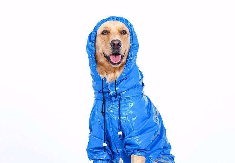 Waterproof Dog Rain Coat (Large Breeds) Rain coat - iplayfetch.com
