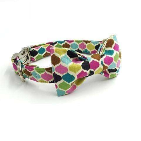 Candy Colours Dog Bow Tie Collar Collars - iplayfetch.com