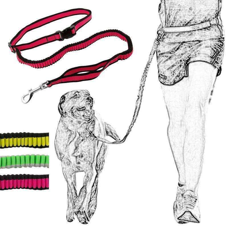Hands-Free Adjustable Bungee Waist Leash Leash - iplayfetch.com