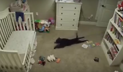 Reaction of This Dog Sneaks into Baby's Room is Just Hilarious