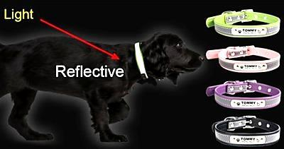 Reflective Customize Dog Collar