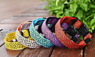 LED Dog Collar in Leopard Design