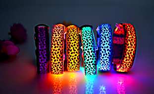 LED Dog Collar in Cute Leopard Design