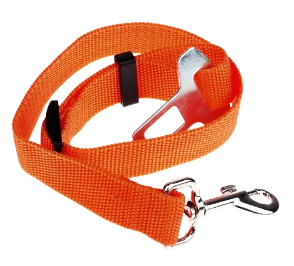 Orange Dog Seat Belt