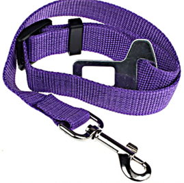 Purple Dog Seat Belt