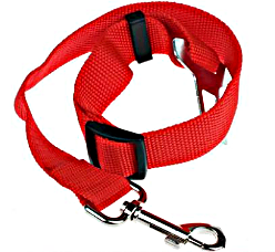 Red Dog Seat Belt