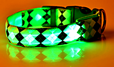 green rhombus led dog collar