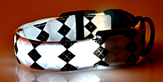 white rhombus led dog collar