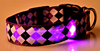 purple rhombus led dog collar