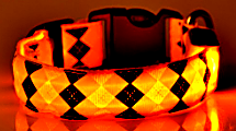 yellow rhombus led dog collar