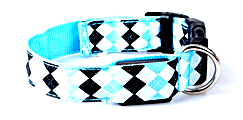 blue rhombus led dog collar