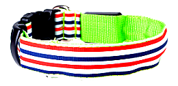 Elegant Stripe LED Dog Collar