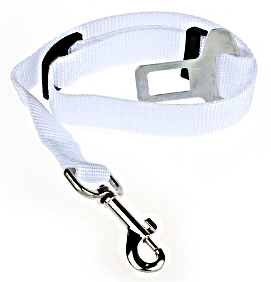 White Dog Seat Belt