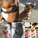 "2"" Wide Bandana Leather Studded Big Dog Collars"