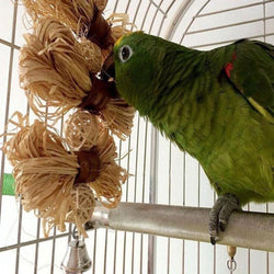 Lovely Parrot Swing Loofah Vine Balls Cage Toy - [product_collection]