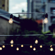 Clear bulb warm festoon lights
