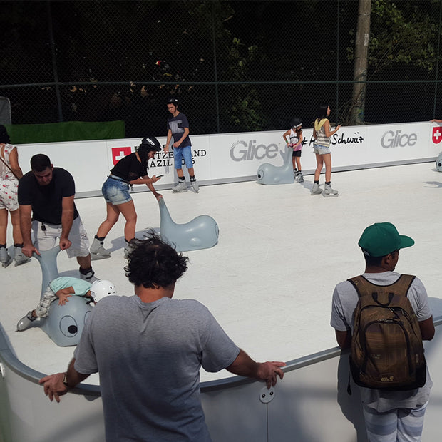 Synthetic Ice Rinks