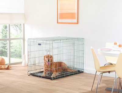 Savic XX Large Zinc Plated Dog Cage dog inside