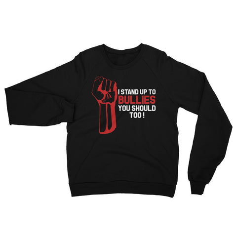 """I STAND UP TO BULLIES YOU SHOULD TOO!"" Raglan Sweater"