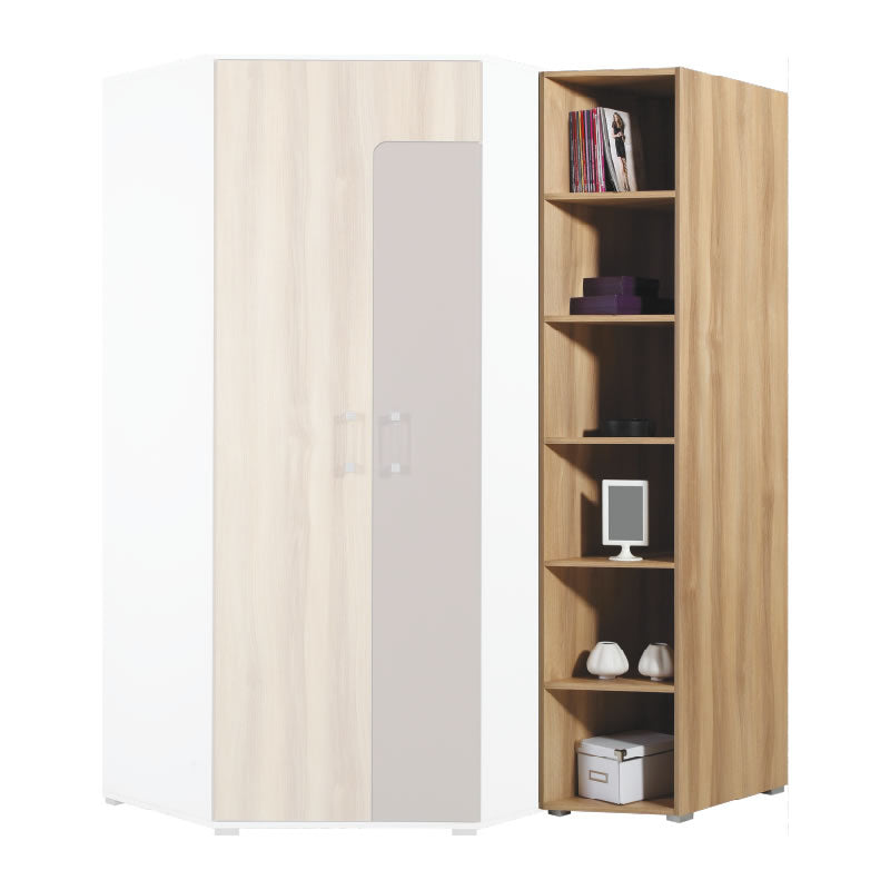 Blog Bookcase A2