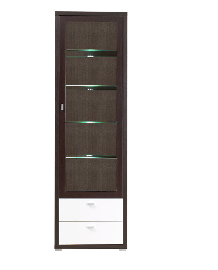 GLASS DOOR CABINET WITH LED LIGHTS- KEN 10