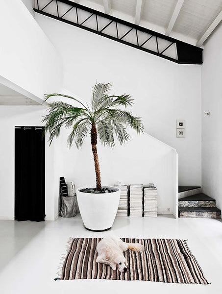 monochrome all white apartment in Milan