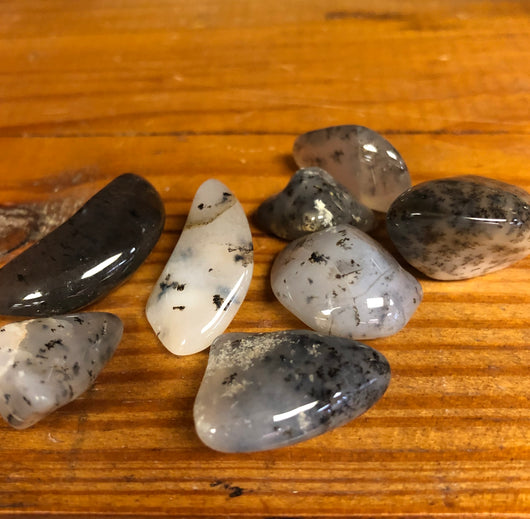 Dendritic Agate Tumbled