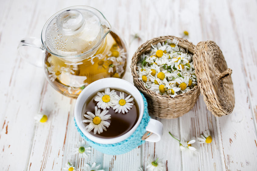 Chamomile Tea 101: How Chamomile Tea Support Your Health