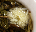 Flowering Black Tea Bloom