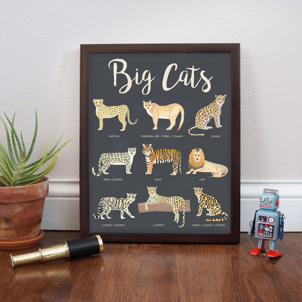 Big Cats Poster Educational Poster by Telegraph Paper Co