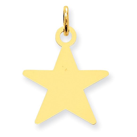 14K Star Disc Charm XM543/13 - shirin-diamonds