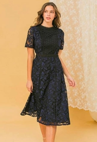Lace Dress - Navy & Black