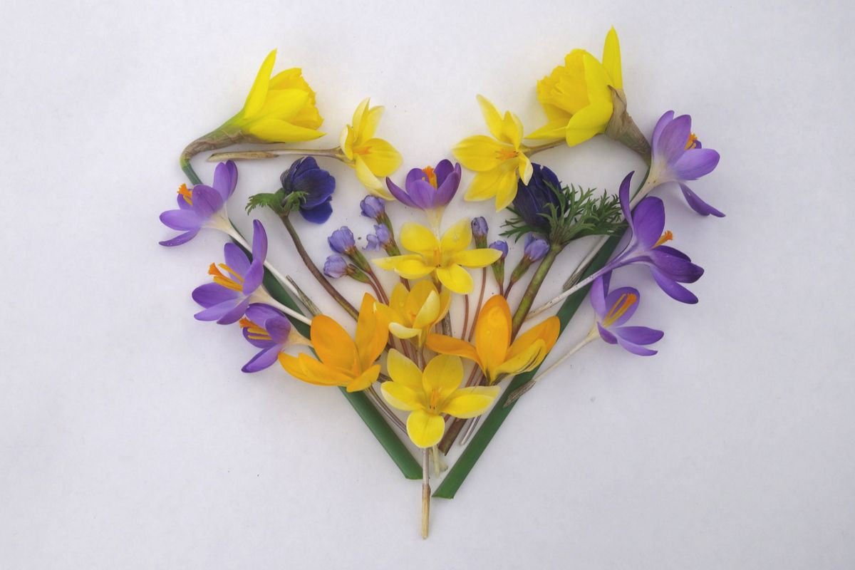 Women are beautiful like this heart shape made of Spring flowers