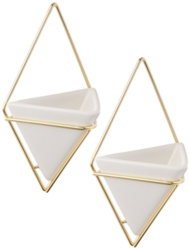 Shop Trigg Hanging Planter Vase & Geometric Wall Decor Container -  Accessories For A Happy Trendy Modern Home at Low Prices  Color Home Happy - Accessories for a happy modern home