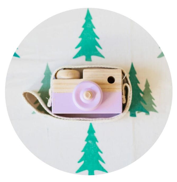 Purple Wooden Camera Decor Accessory