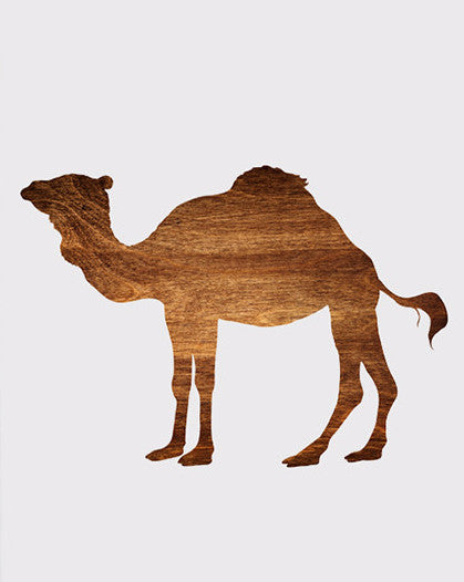 Unframed Camel Canvas Art Print