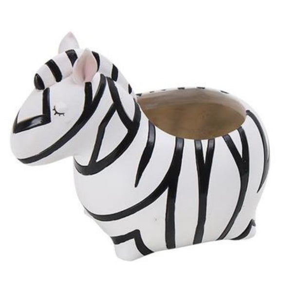 Shop Cute Zebra Succulent Planter -  Accessories For A Happy Trendy Modern Home at Low Prices  Color Home Happy - Accessories for a happy modern home