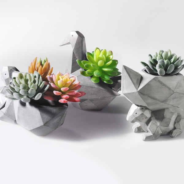 Shop Modern Succulent Planter Pot (Plant not included) -  Accessories For A Happy Trendy Modern Home at Low Prices  Color Home Happy - Accessories for a happy modern home