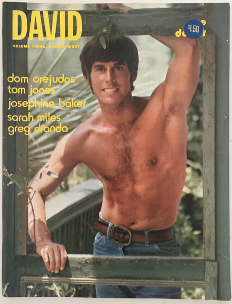 David Vintage Gay Magazine August 1973, Vol 3, No 8