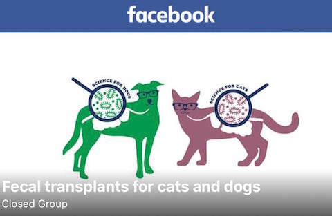 Facebook group: Fecal Transplants for Cats and Dogs