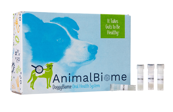 DoggyBiome: Oral Health Test Kit (Two Tests)