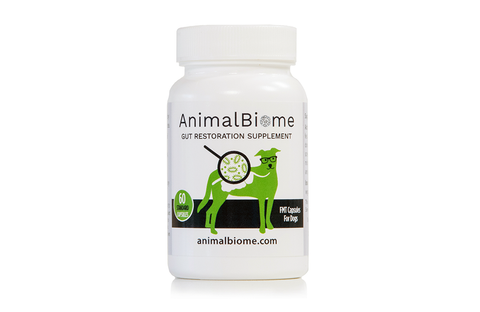 DoggyBiome: Gut Restore Supplement (60 Capsules)(Raw Diet Donor)