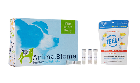 DoggyBiome: Oral Health System With TEEF! Drinkable Prebiotic