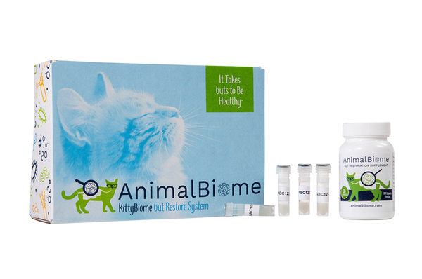 KittyBiome Gut Restore System (30 Capsules and Two Tests)