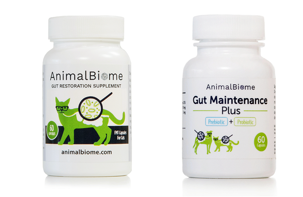 ZZ KittyBiome: Gut Restore And Maintain Bundle (60 capsules)