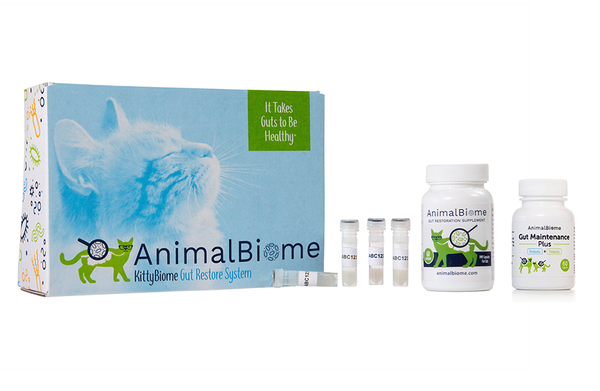 KittyBiome: Gut Restore and Maintain System with Gut Health Tests and (60 Capsules)