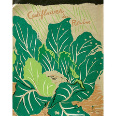 Green Gulch Seed Catalogue, Cauliflower in Rain
